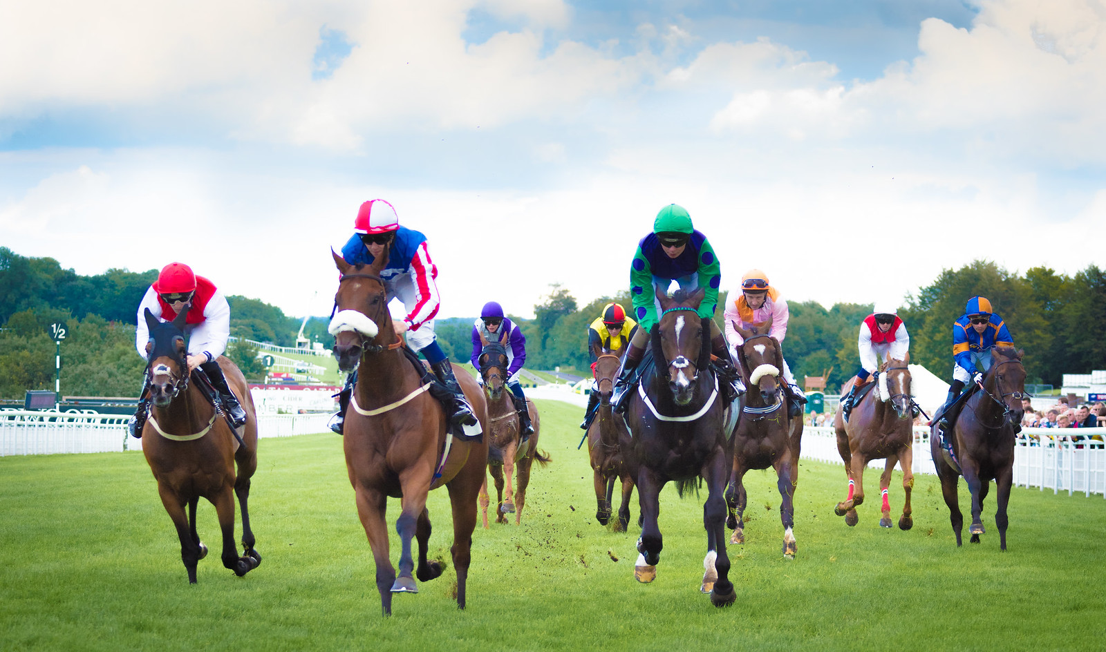 Pettochside leads the field home