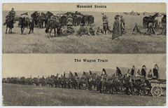 Mounted Scouts, The Wagon Train