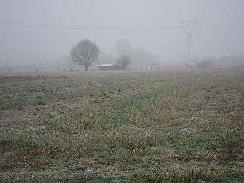 winterse mist s'middags 23/01/2015