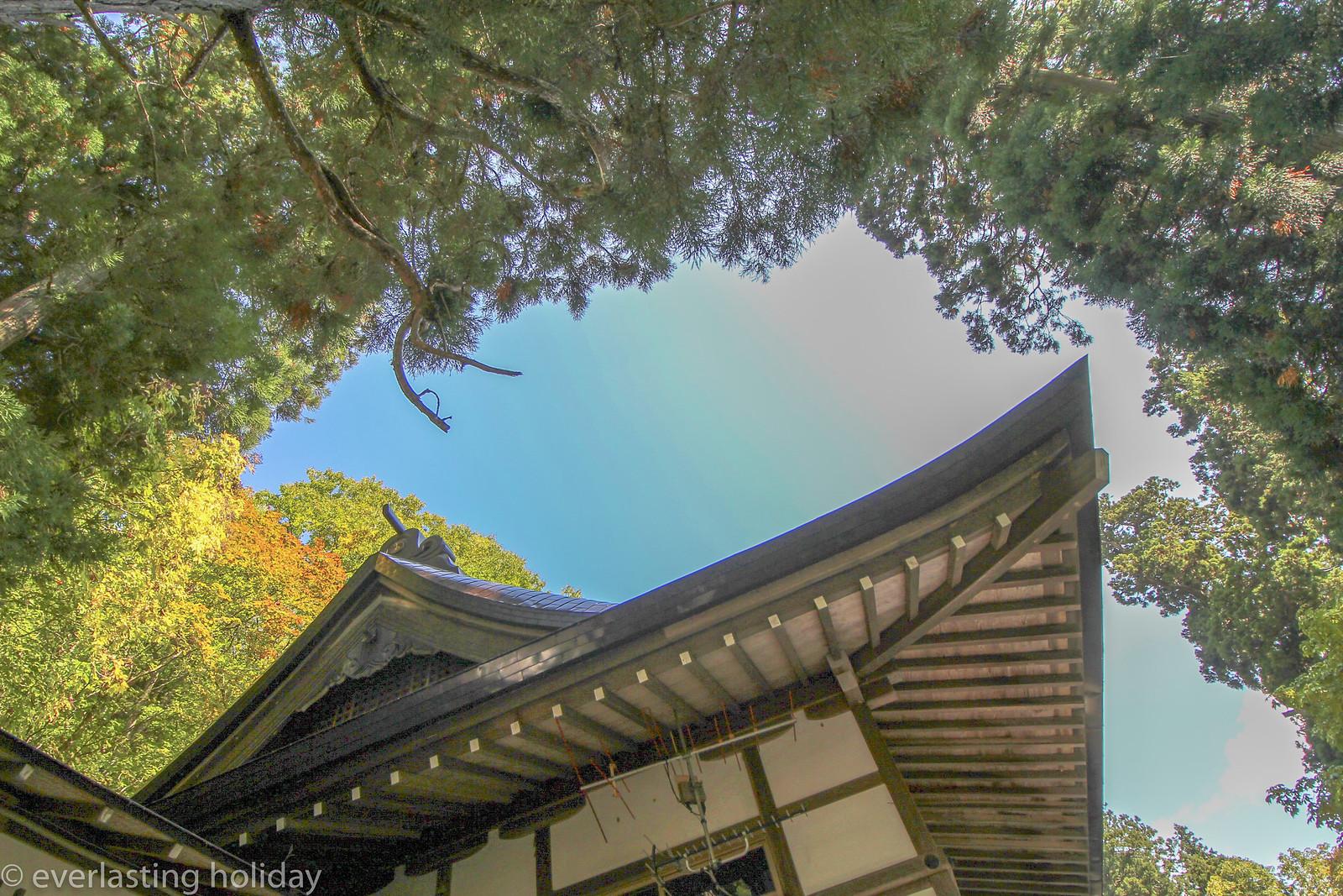 戸隠神社 Togakushi-jinja Shrine-0003