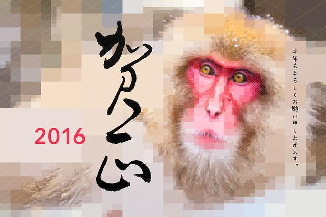 2016-monkey