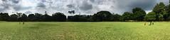 Botanic garden Kandy