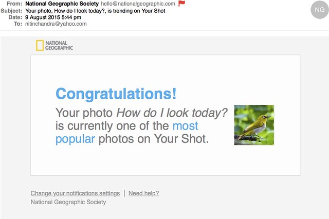 Your photo How do I look today is trending on Your Shot