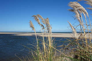 Laguna Garzon, Uruguai