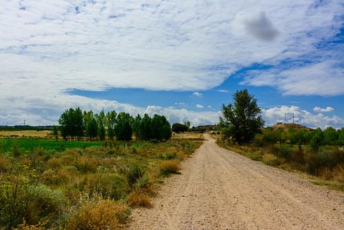 Camino de Castrillo de la Vega