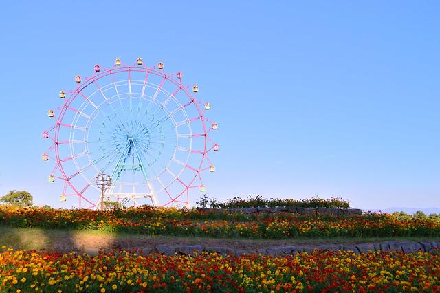 大観覧車  Greate  ferris wheel