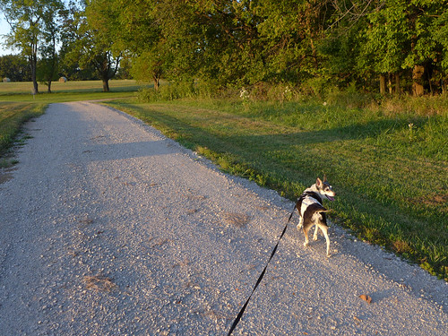 2015-09-25 - Walking at Smithville Lake - 0019 [flickr]