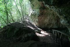 43 - Los Haitises national park - Cueva de la linea - Cave exit / Los Haitises Nationalpark - Cueva de la linea - Höhlenausgang