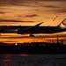 Japan Airlines by cvillandry (Instagram & Twitter @cvillandry)