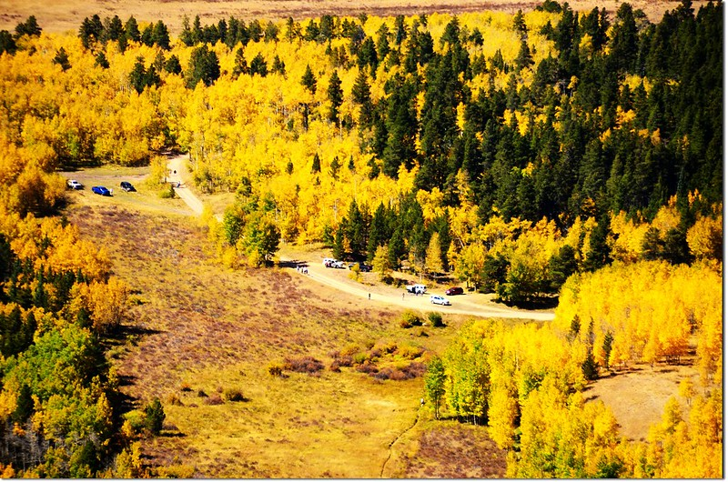 Fall colors at Kenosha Pass, Colorado (17)