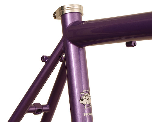 <p>Seat Cluster on a Gunnar Sport in Starlight Purple.  The Sport makes a most comfortable road bike with medium wheelbase, relatively upright fit and capacity for bigger tires.</p>