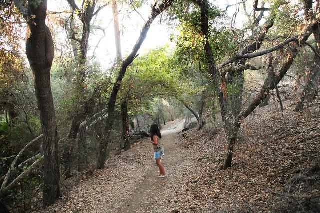 Kit Carson Park Hiking Trails