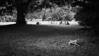 Nancy - parc sainte marie