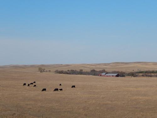 Fort Pierre National Grasslands