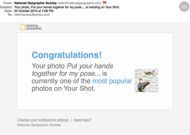 Your photo Put your hands together for my pose is trending on Your Shot