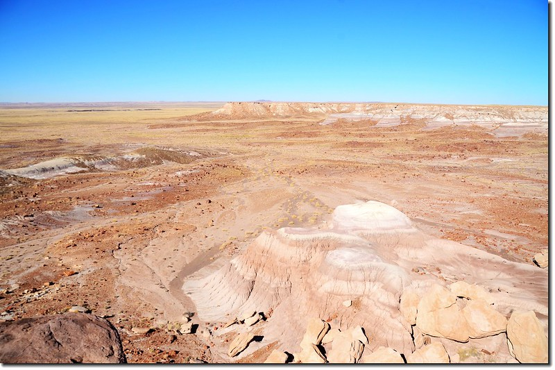 Jasper Forest, Petrified Forest National Park 2