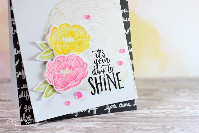 Shine Brighter6