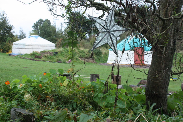 Our yurt camping in Cork has several yurts to choose from and facilities across the lawn