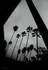 California Rain by jamie.jones113