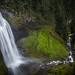 Salt Creek Falls by michellelynn