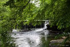 Big Falls Duck River 1963