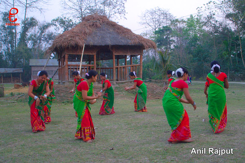 Mishing Tribe girls performing Bihu, Majuli Island