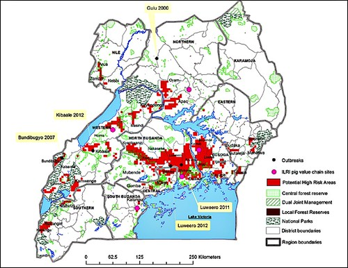 High-risk areas in Uganda for possible/potential pig transmission of Ebola