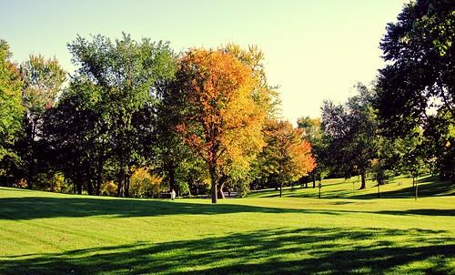 voyage travel canada automne couleurs québec plaine