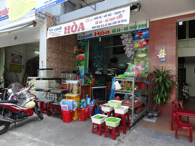 aquarium stores in Danang, Vietnam 20834060975_58eab893e3_z