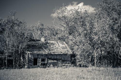 abandoned farmhouse homestead woodstove