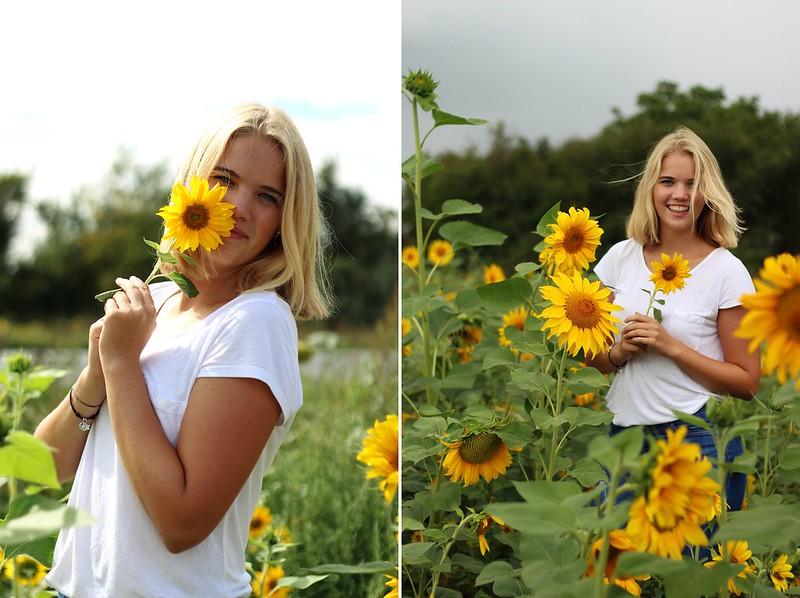 Sonneblumenfeld Alisha September 2015 164gimp-tile