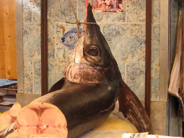 pesce-spada-cr-brian-dore