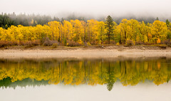 Pend Oreille River Foggy Autumn