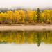 Pend Oreille River Foggy Autumn by CraigGoodwin2