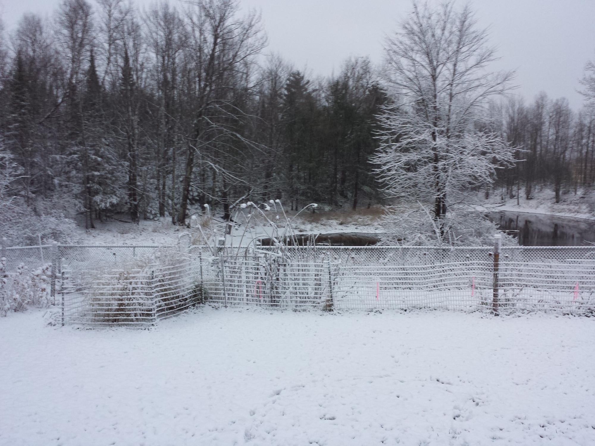 snow_20151113