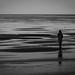 Small photo of Alone