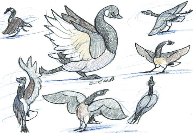 12.1.15 - Festive Skating Christmas Geese!