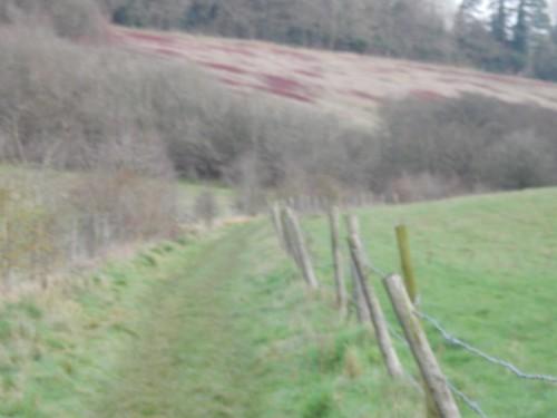 Henley shortcut