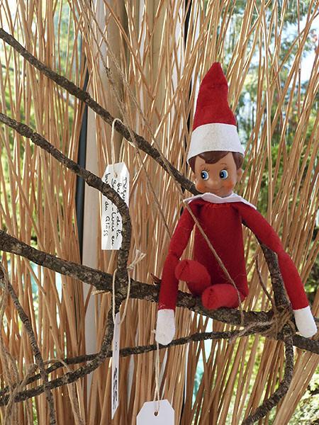 l'elfe perché
