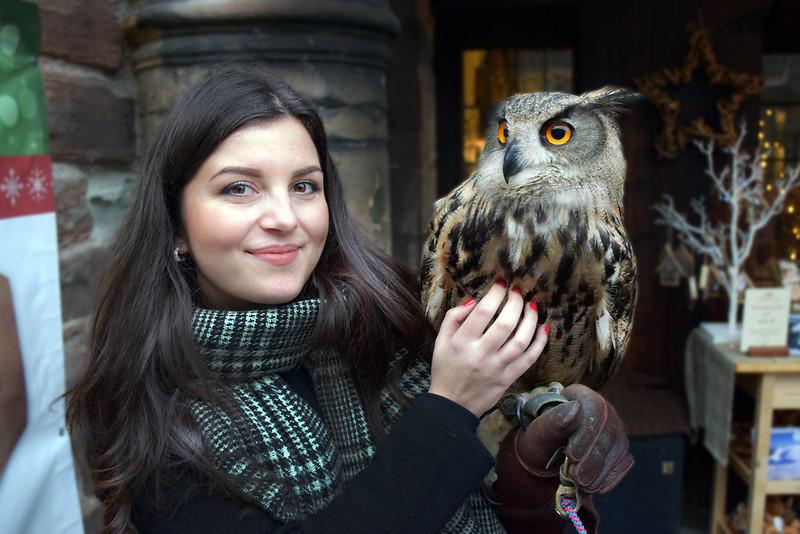 owl_olja