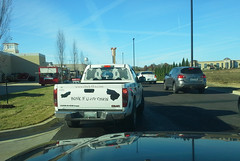 Honk if you Luv (Tanger Outlets Chick-Fil-A) Chikin!