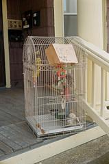 handrail, cage, iron, animal shelter,