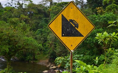desktop forest highway grade jungle panama centralhighlands featured santafé santafenationalpark chiriquidistrict