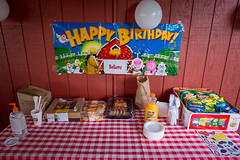 McMICKY Farm Birthday