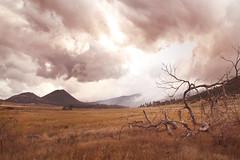 Cuyamaca State Park