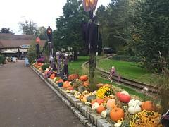 Nigloland Halloween