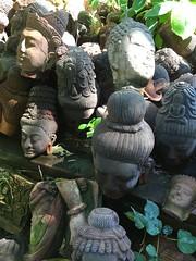 Terra cotta garden