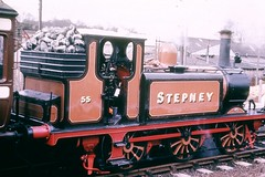 "A1X Terrier ""Stepney"" at Bluebell 1960s"