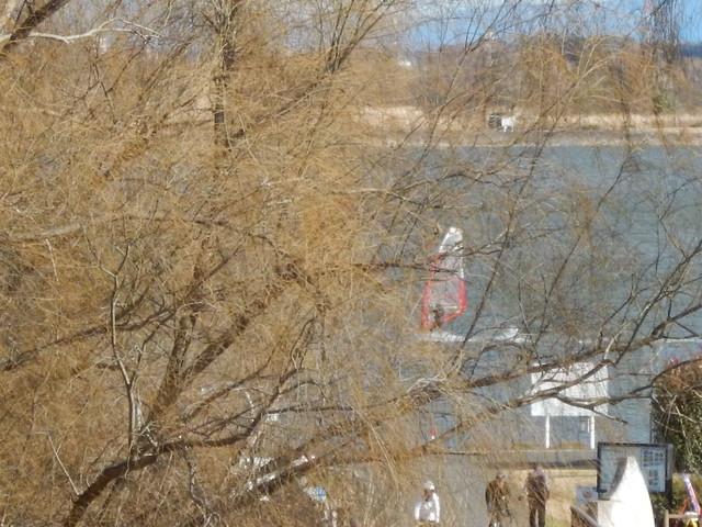 2015年 12月29日 渡良瀬遊水地 今日の走り