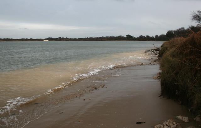 Bramble Bush Bay, Poole Harbour